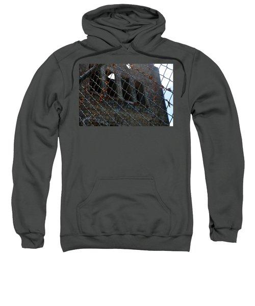 Fenced In Sweatshirt