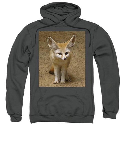 Fennec Fox Sweatshirt