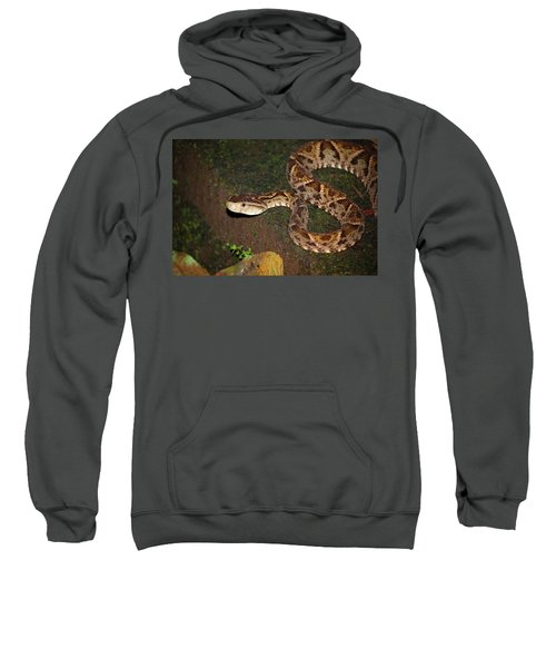 Sweatshirt featuring the photograph Fer-de-lance, Botherops Asper by Breck Bartholomew