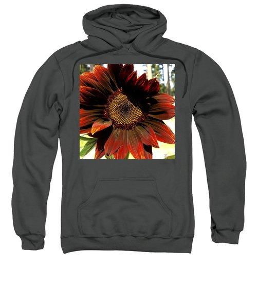 Fibonacci Hues Sweatshirt