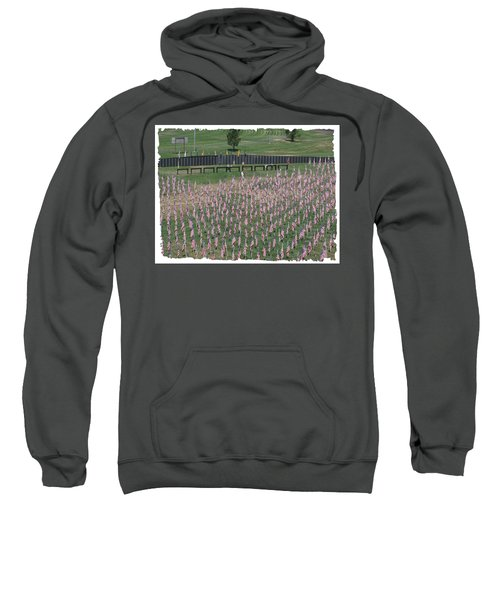 Field Of Flags - Gotg Arial Sweatshirt