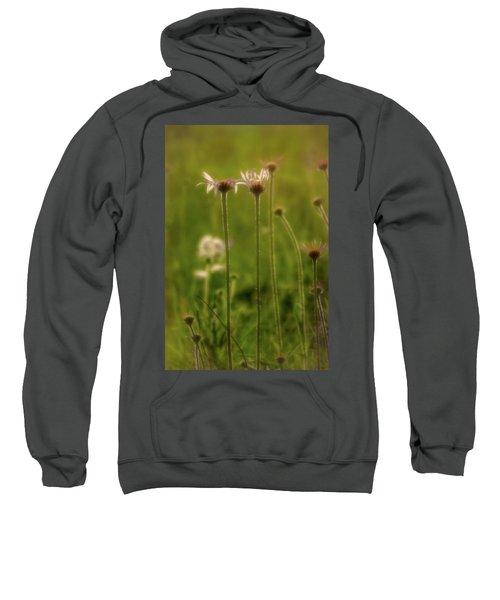 Field Of Flowers 3 Sweatshirt