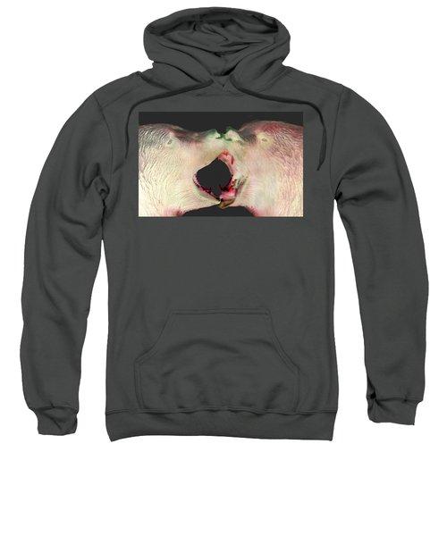 Fighting Bears Sweatshirt