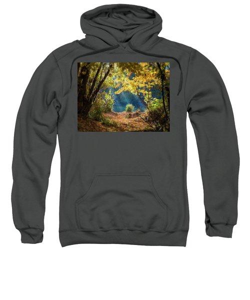 Filtered Light 3 Sweatshirt