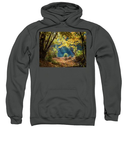 Filtered Light 3 Sweatshirt