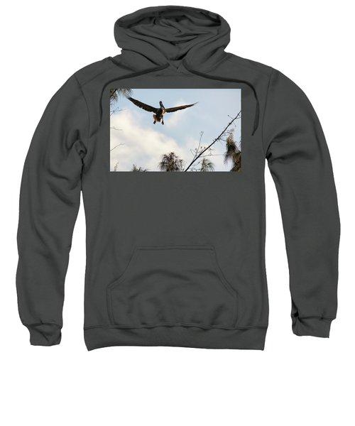 Final Approach Sweatshirt