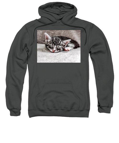 Finally Asleep  Copyright Mary Lee Parker 17  Sweatshirt