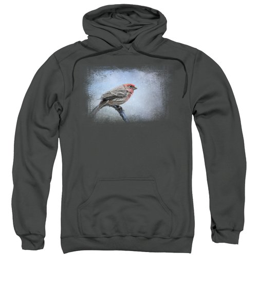 Finch In The Snow Sweatshirt