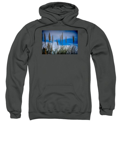Sweatshirt featuring the photograph Fine Art Colour-132 by Joseph Amaral