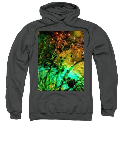 Fireworks 14 Sweatshirt