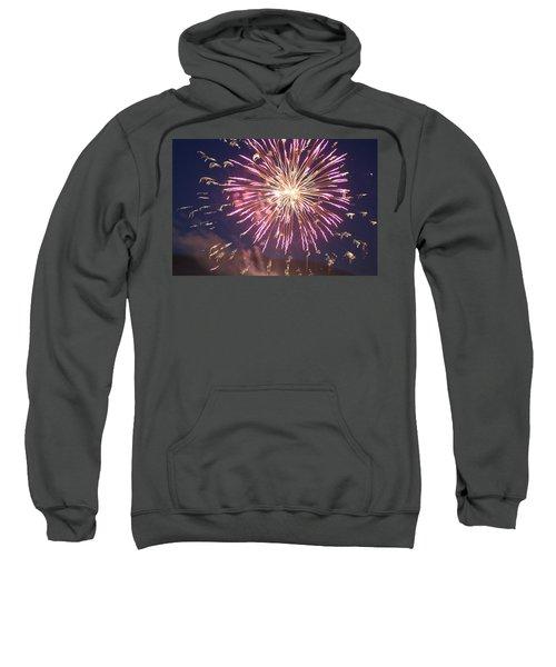 Fireworks In The Park 2 Sweatshirt