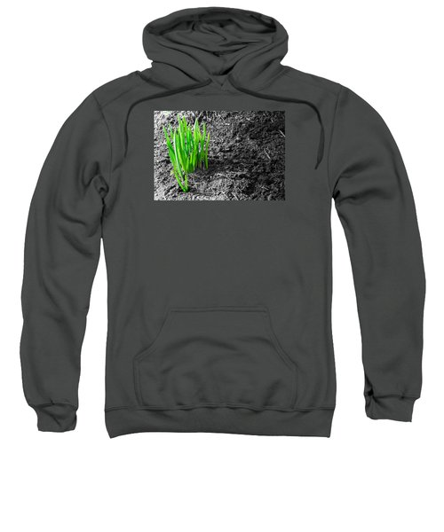 First Green Shoots Of Spring And Dirt Sweatshirt