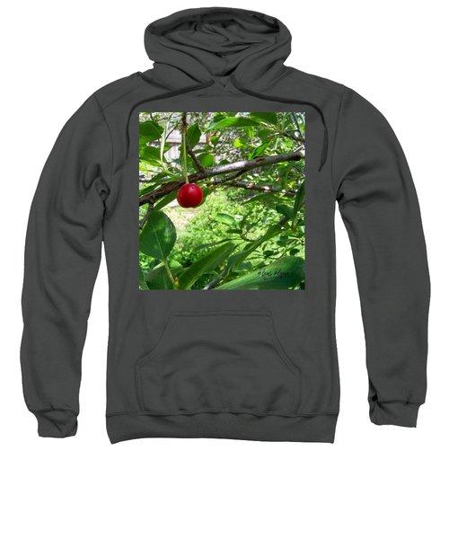 First Of The Season Sweatshirt