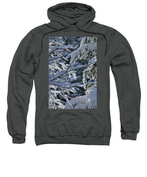 First Snow II Sweatshirt