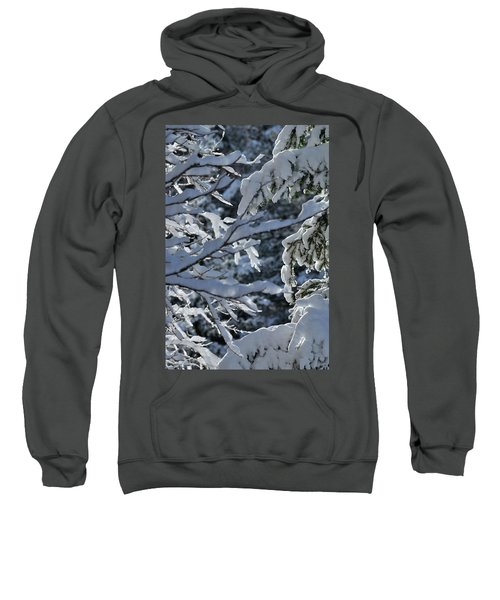 First Snow II Sweatshirt