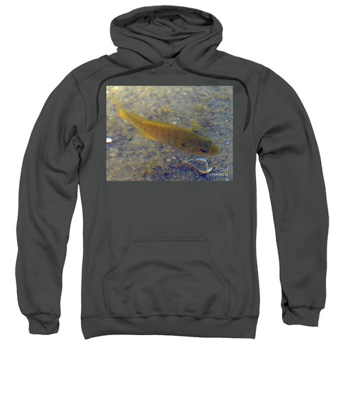 Fish Sandy Bottom Sweatshirt