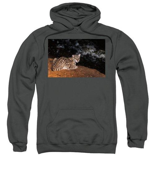 Fishing In The Stream Sweatshirt by Alex Lapidus