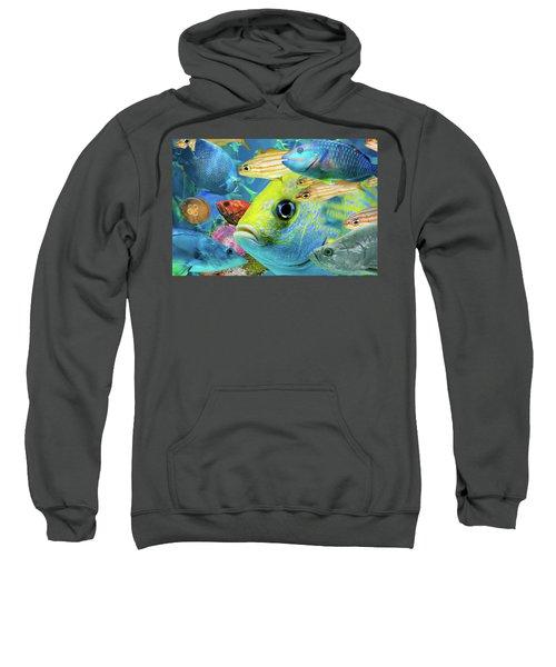 Fishy Collage 02 Sweatshirt