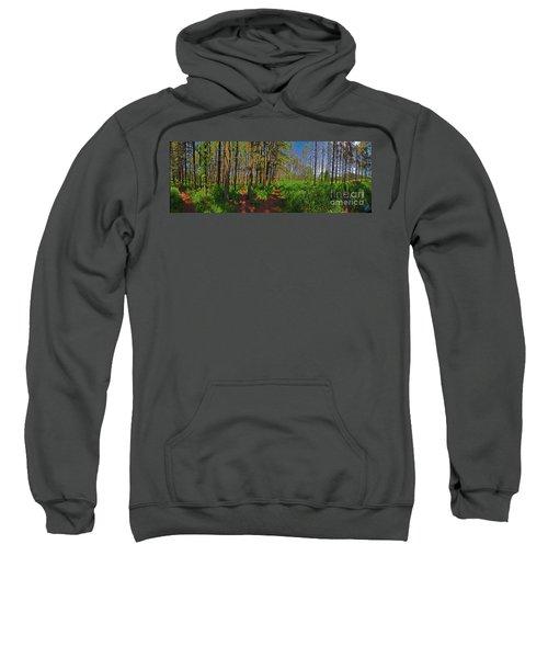 Paths, Pines 360 Sweatshirt