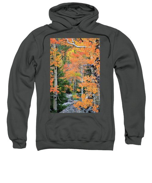 Flaming Forest Sweatshirt by David Chandler