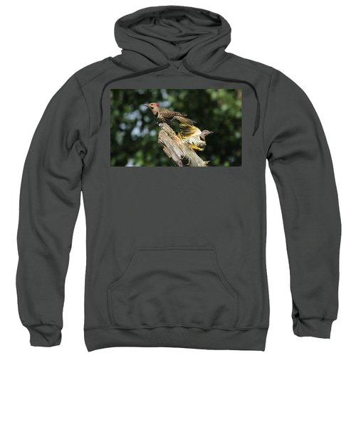 Flickers Sweatshirt