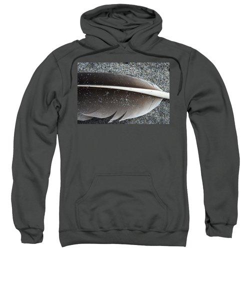 Flight Feather Sweatshirt