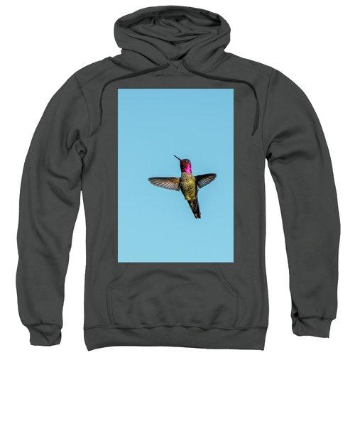 Flight Of A Hummingbird Sweatshirt