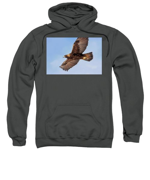 Flight Of The Golden Eagle Sweatshirt