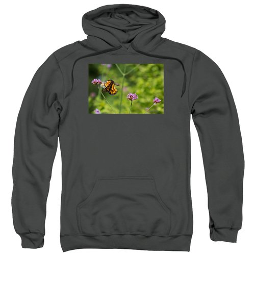 Flight Of The Monarch 2 Sweatshirt