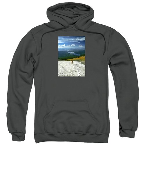 Flight Risk Sweatshirt