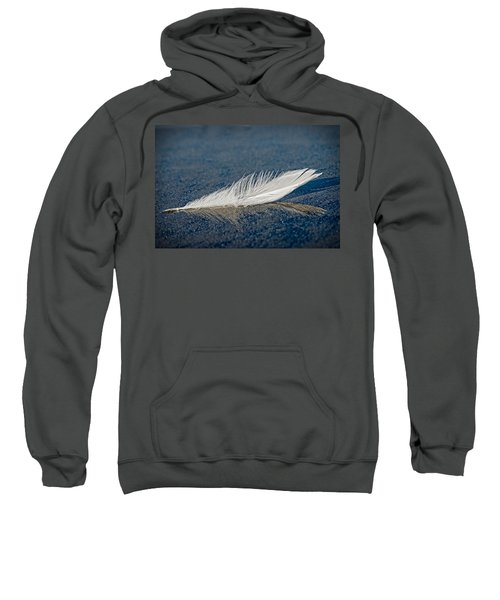 Floating Feather Reflection Sweatshirt