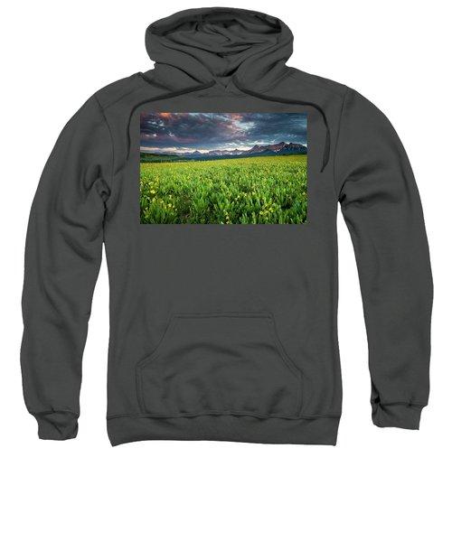 Flower Field And Sneffels Range Sweatshirt