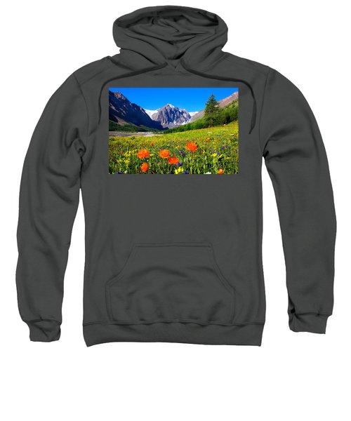 Flowering Valley. Mountain Karatash Sweatshirt