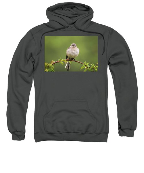 Fluffy Mockingbird Sweatshirt