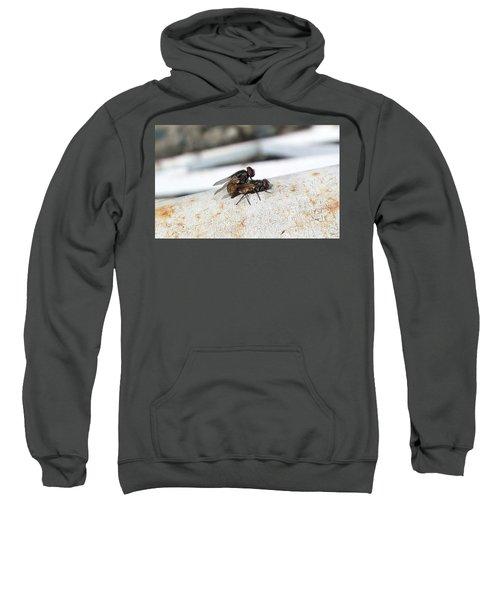 Fly Love Sweatshirt