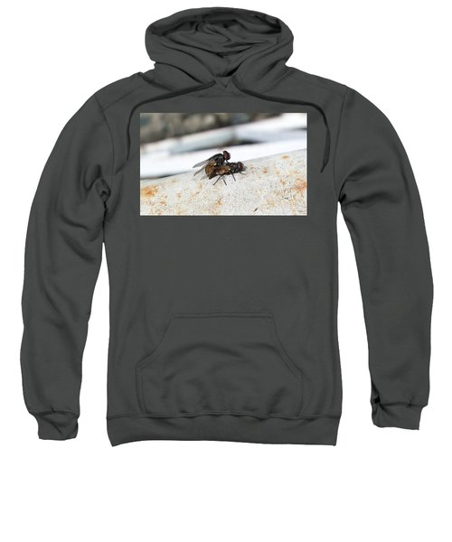 Fly Love Sweatshirt