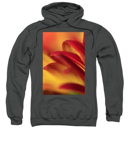 Flying Sweatshirt
