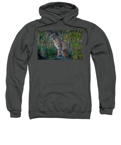 Focused On The Hunt Sweatshirt
