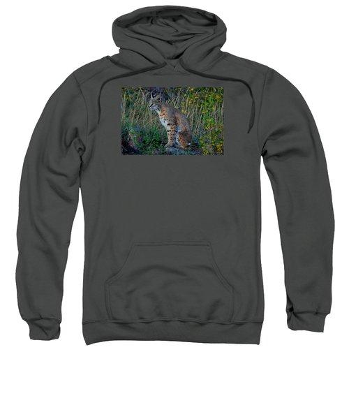 Focused On The Hunt Sweatshirt