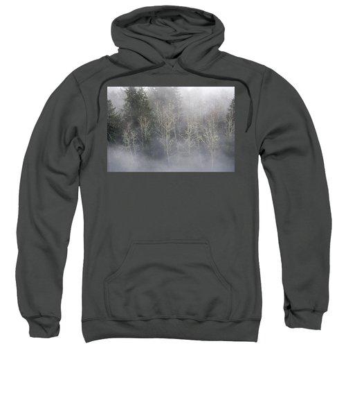 Foggy Alders In The Forest Sweatshirt