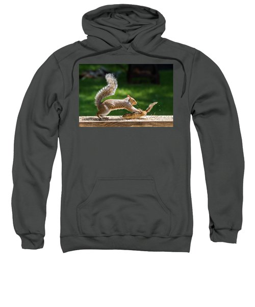 Food Fight Squirrel And Chipmunk Sweatshirt