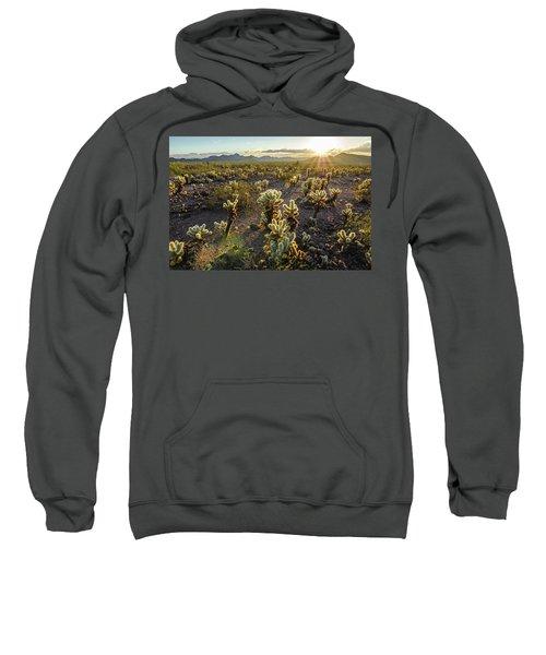 Sea Of Cholla Sweatshirt