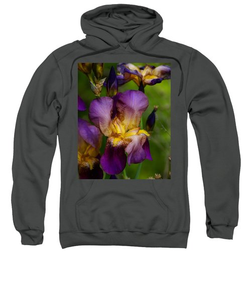 For The Love Of Iris Sweatshirt