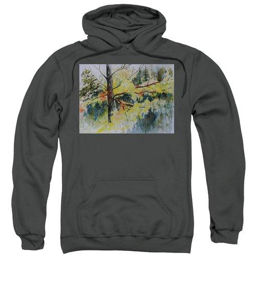 Forest Giant Sweatshirt