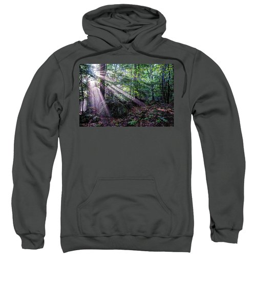 Forest Sunbeams Sweatshirt