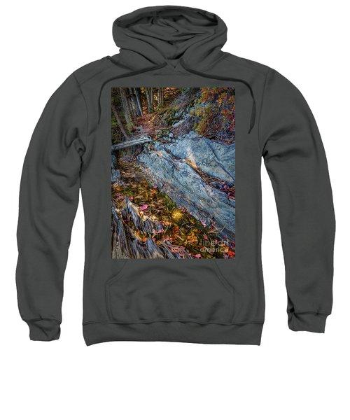 Forest Tidal Pool In Granite, Harpswell, Maine  -100436-100438 Sweatshirt