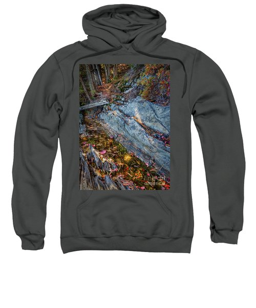 Forest Tidal Pool In Granite, Harpswell, Maine  -100436-100438 Sweatshirt