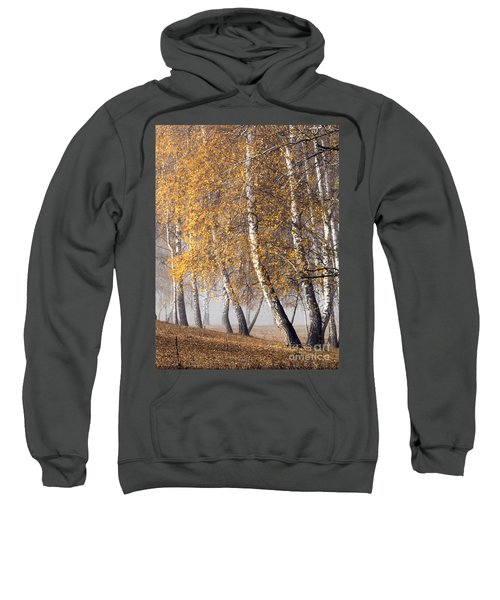 Forest With Birches In The Autumn Sweatshirt