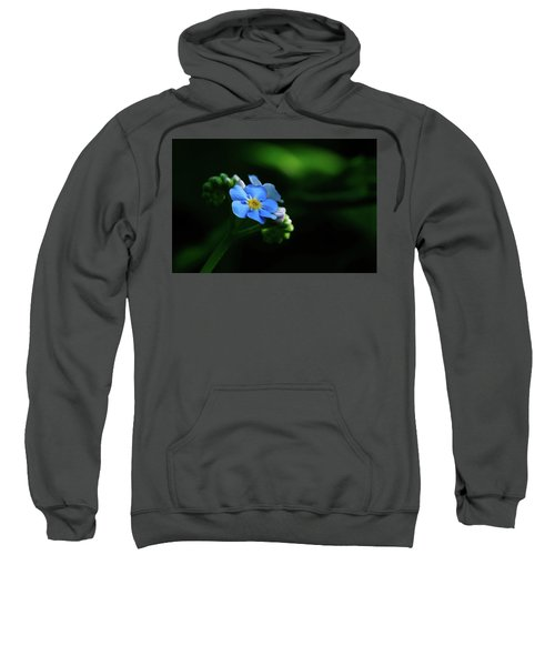 Forget-me-not Sweatshirt