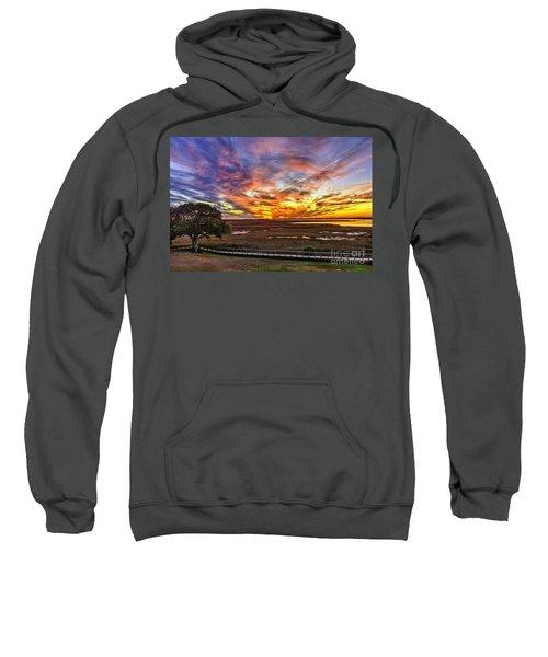 Enlightened Tree Sweatshirt